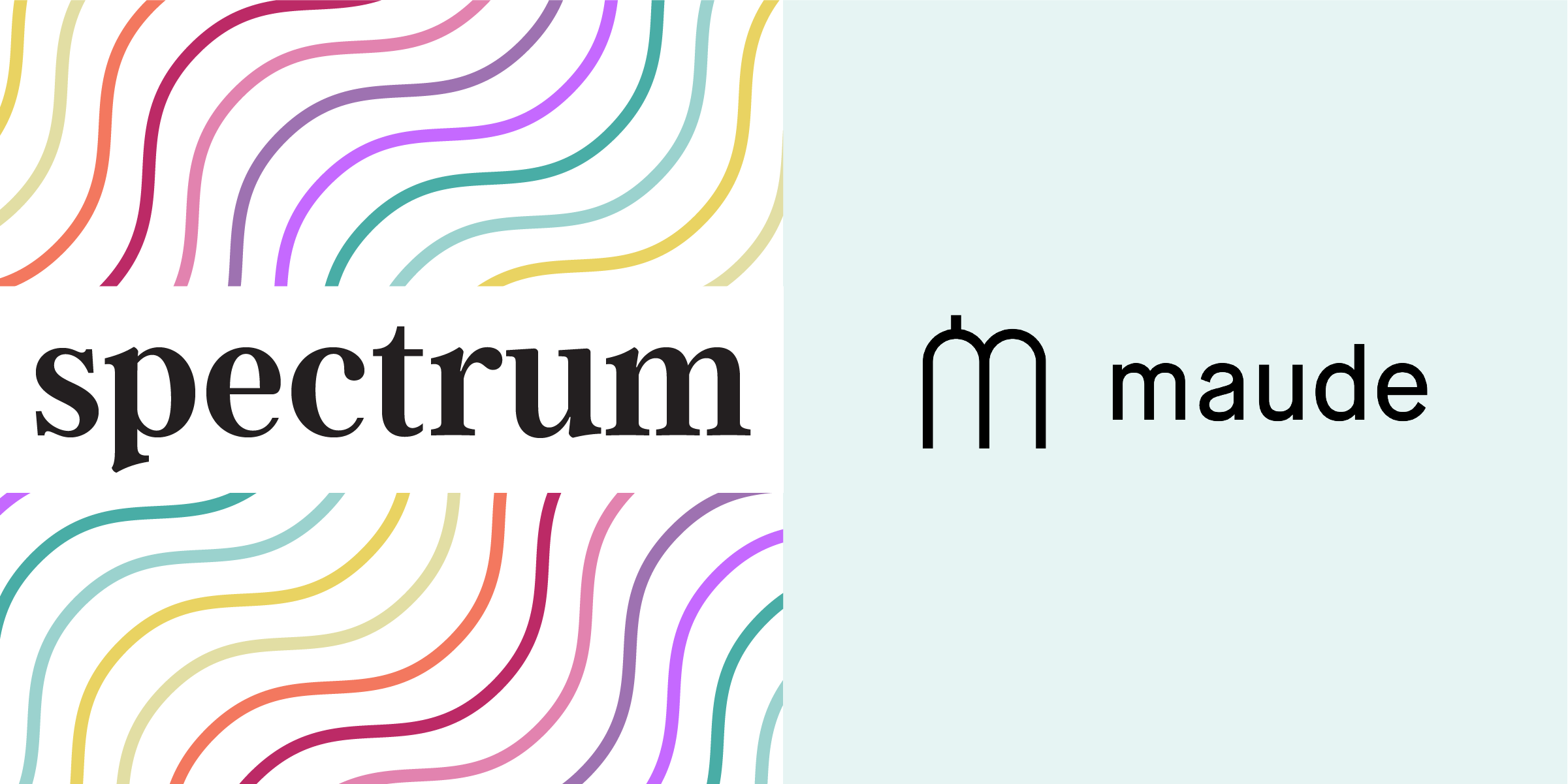 Faraday Spectrum interview series with maude